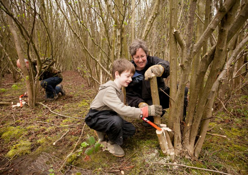 Volunteers in community woodland.