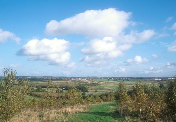 Coal Tips to Country Parks Walk