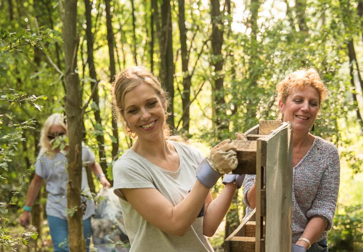 Image of business partners volunteering in woodland