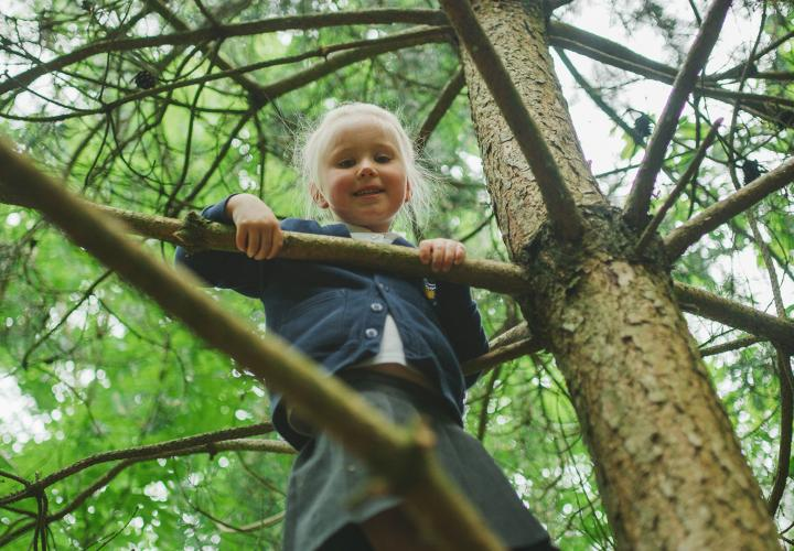 Image of girl climbing tree.