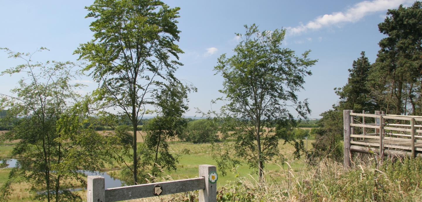 Swarbourne Meadows
