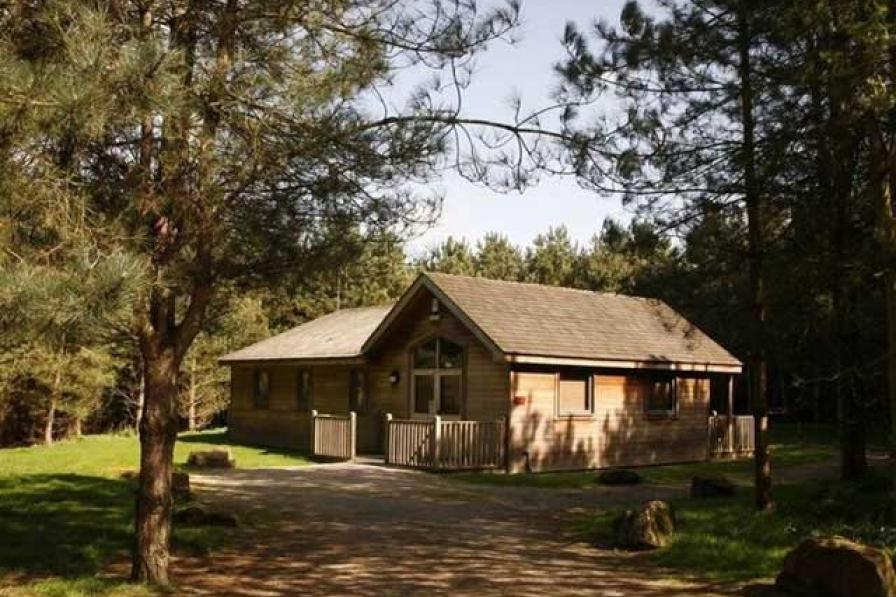 Forest Lodges at Rosliston Forestry Centre
